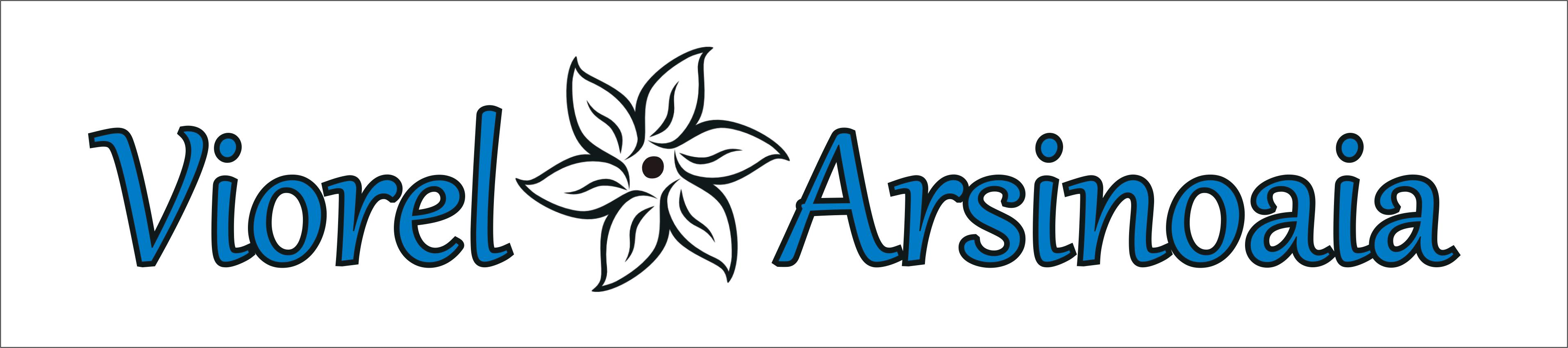 Cupa Viorel Arsinoaia banner